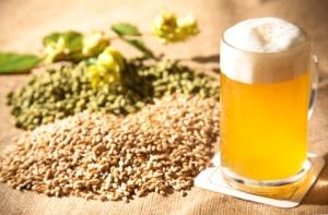 beer-ingredients